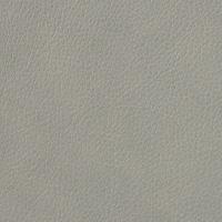 Cuir gris Elmotique VI 11023
