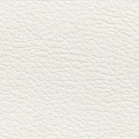 Simili-cuir Icarus Blanc B650