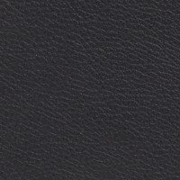 Cuir noir Elmotique 3028