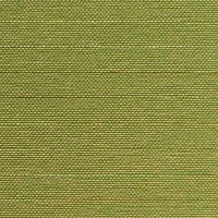 Vert olive-Tempo 271