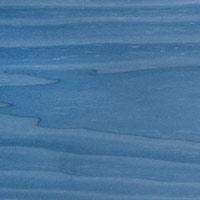 Hêtre bleu 28