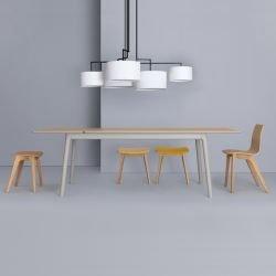 Table rectangulaire chêne teinté avec rallonges E8L Zeitraum