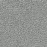 Parotega NF-ash grey