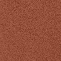 Erable rouge mat 26