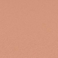 Orange givrée 144