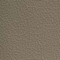 Cuir taupe - 7604