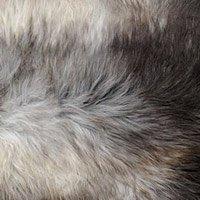 Peau mouton chiné gris brun