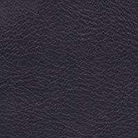 Cuir noir Silk 842
