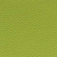 Cuir vert anis Panama 5390